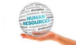 Servicii Resurse Umane 1 143997538351060 262x156